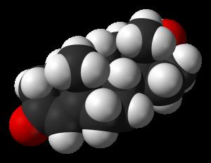 ciclo di steroidi anabolizzanti