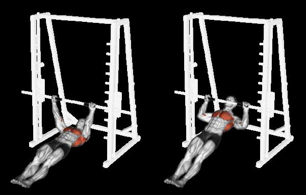 body rows - trazioni orizzontali