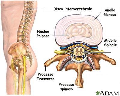 Mal di schiena lombalgia le cause principali - Mal di schiena a letto cause ...