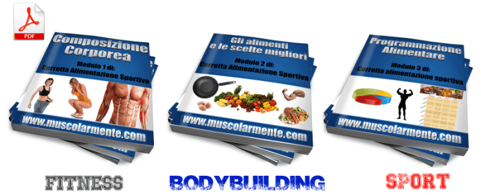 alimentazione body building