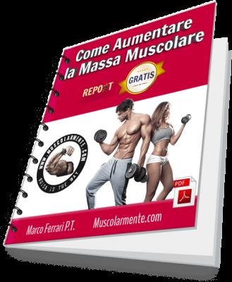 aumentare la massa muscolare 3D